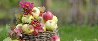 Яблочный Спас в 2020 году: какого числа, дата, традиции и приметы