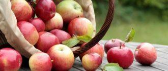 Приметы на Яблочный Спас 19 августа