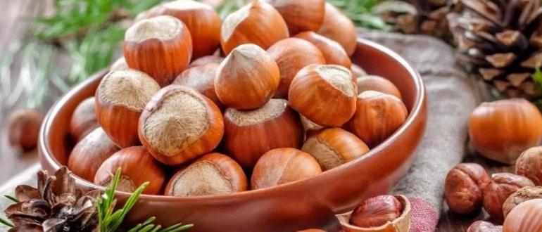 Ореховый Спас в 2021 году какого числа будет: традиции и приметы