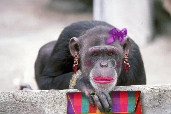 Картинка накрашенная обезьяна